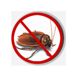 cockroach-control-richmond-hill